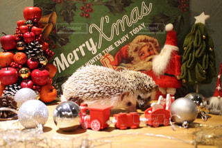 ハリネズミのクリスマス - No.969327