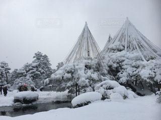 雪の覆われた兼六園の写真・画像素材[969530]