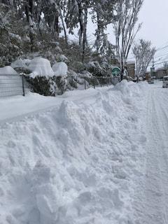 大雪の写真・画像素材[969630]