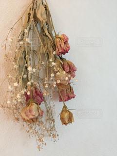 花のある暮らしの写真・画像素材[1367159]
