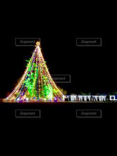 大きなクリスマスツリー - No.970758