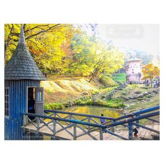 秋色の写真・画像素材[969949]