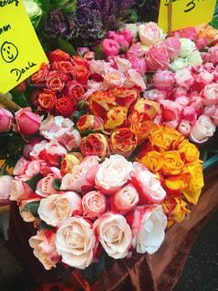 君に薔薇薔薇🌹の写真・画像素材[970232]