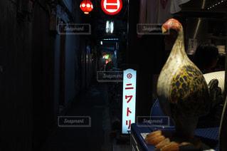 ストップ ライトの上に座っている鳥の写真・画像素材[970069]