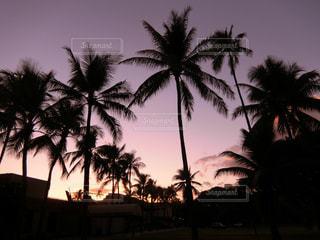 ハワイの夕空 - No.970712