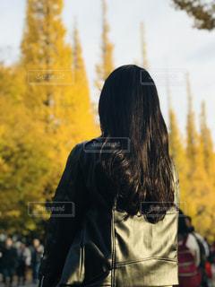 イチョウ並木と私の写真・画像素材[970871]