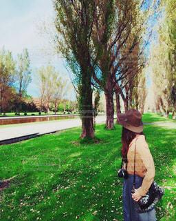 秋の公園 - No.970900