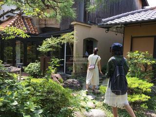 庭園の写真・画像素材[972552]
