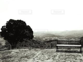落ち着く場所の写真・画像素材[1010980]