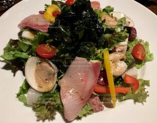 魚介サラダの写真・画像素材[1042204]