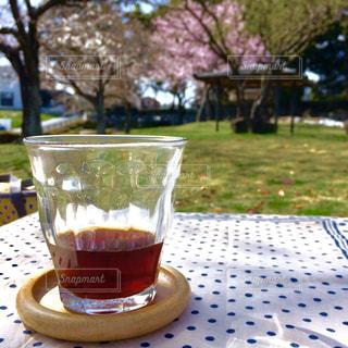 ピクニックでお花見の写真・画像素材[1083565]