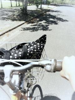 サイクリング日和の写真・画像素材[1177492]