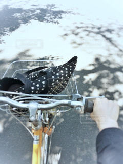 サイクリング日和の写真・画像素材[1177501]