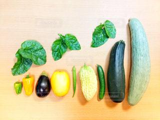 夏野菜の背くらべの写真・画像素材[1378269]