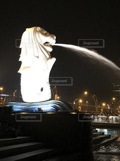 マーライオン 夜景 シンガポールの写真・画像素材[971165]