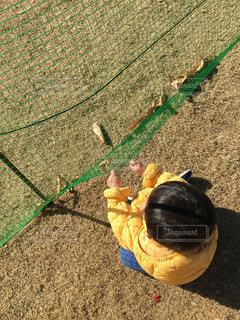 公園の芝生で遊ぶゆうきボーイの写真・画像素材[971184]