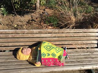 ベンチで寝るゆうきボーイの写真・画像素材[971186]