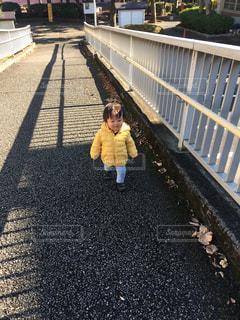 お散歩中のゆうきボーイの写真・画像素材[1677655]