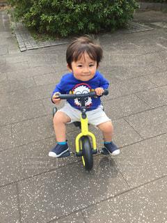 公園で三輪車に乗って見つめる少年ゆうきボーイ。の写真・画像素材[2250535]