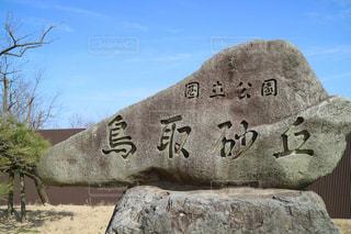 鳥取砂丘にての写真・画像素材[973753]
