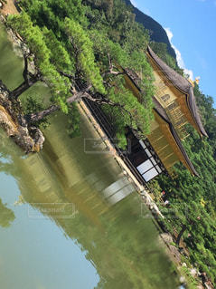 金閣寺の写真・画像素材[971288]