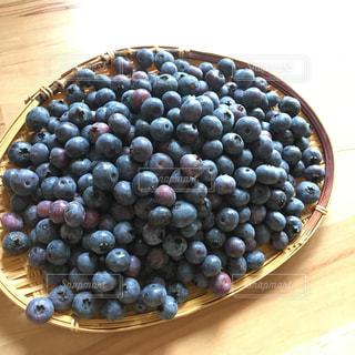 ブルーベリー の収穫の写真・画像素材[972725]