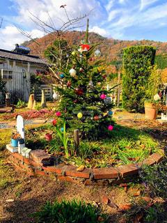 メリークリスマスの写真・画像素材[1667393]
