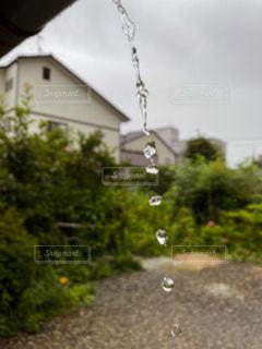 梅雨の写真・画像素材[3407267]