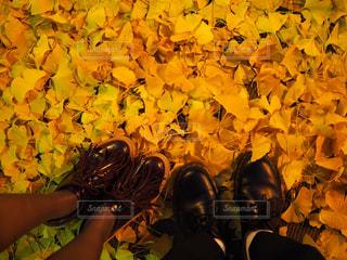 革靴でお散歩 - No.977101