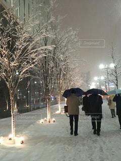 大雪の東京の写真・画像素材[976275]