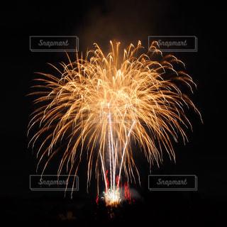 夜空の花火の写真・画像素材[975860]