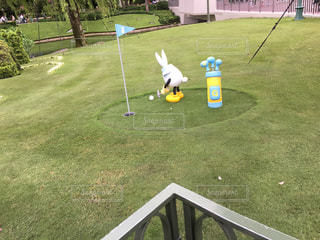 ゴルフの兎 - No.973033