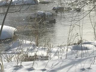 近く雪に覆われたフィールドの写真・画像素材[980756]