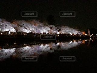 池に映る桜の写真・画像素材[974076]