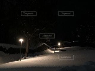 雪の夜道の写真・画像素材[998411]