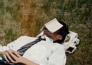 芝生で昼寝の写真・画像素材[983022]