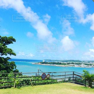 真夏の海の写真・画像素材[974734]