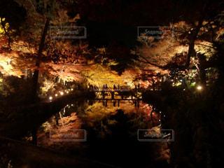 香嵐渓の紅葉夜景 - No.1077358