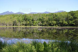 知床五湖のリフレクションの写真・画像素材[1163240]