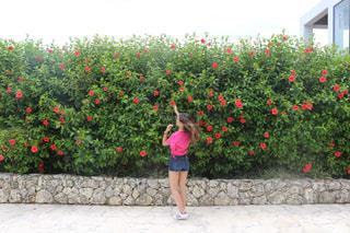 花の前に立っている女性の写真・画像素材[975374]