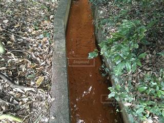 堆積物が赤い水路の写真・画像素材[979056]
