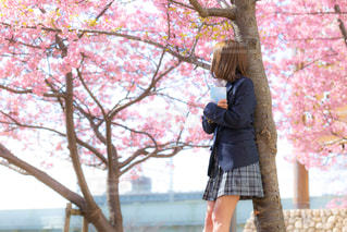 桜を見ながら想いを馳せる女子高生の写真・画像素材[1837045]