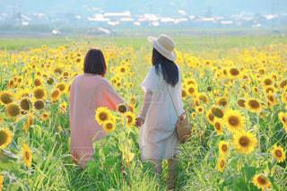 ひまわり畑で手を繋ぐ2人の女の子の写真・画像素材[2362592]