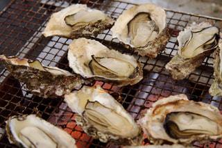 焼き牡蠣の写真・画像素材[978312]