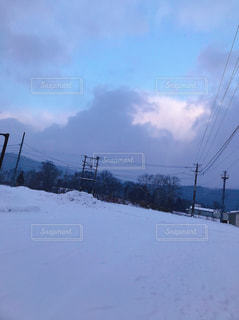 冬の散歩の写真・画像素材[988007]