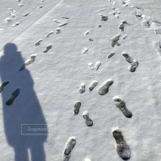 雪の足跡 - No.977205