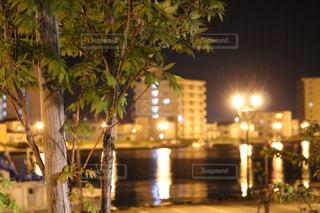 夜景 - No.977443