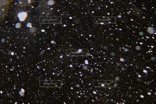 雨の中を飛んでいる鳥の写真・画像素材[977502]