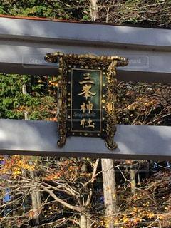 三峯神社の写真・画像素材[977542]