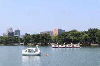 公園での1枚の写真・画像素材[1430932]